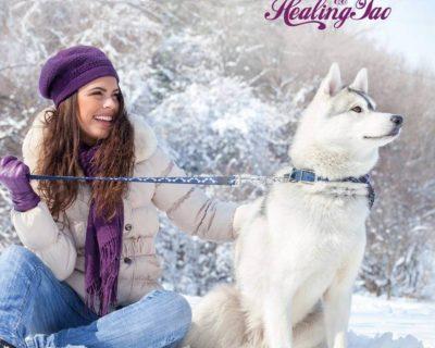 Зима – энергия металла. Время внутренней трансформации и духовного роста.