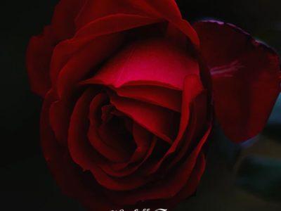 30.09.2019 Энергия расширения: огонь любви, успеха и секса.